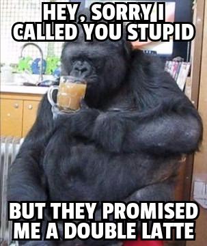 koko stupid latte